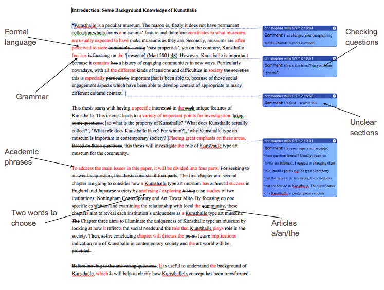 novel essay examples definition