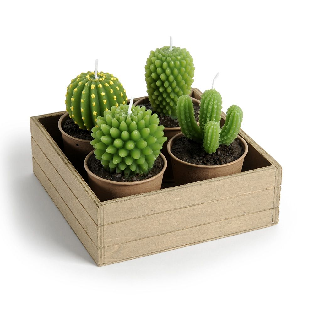 4 bougies cactus support bois maisons du monde cactus pinterest cactus maison du. Black Bedroom Furniture Sets. Home Design Ideas