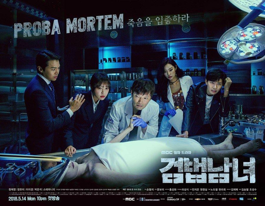 Download Drama Korea Investigation Couple Sub Indo