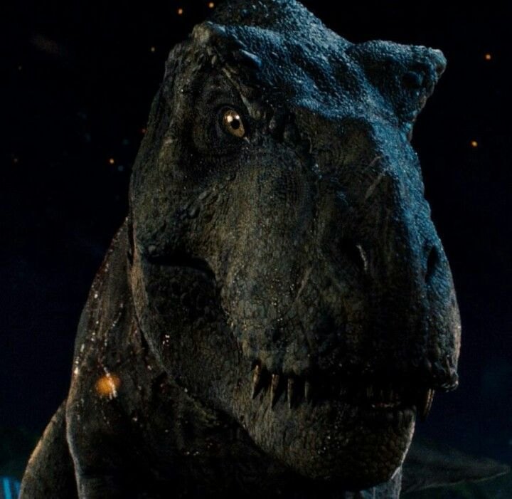Jurassic World Blue And Rexy Fallen Kingdom Ver By: Alternate Fan Made Poster For The Movie With Rexy Jurassic