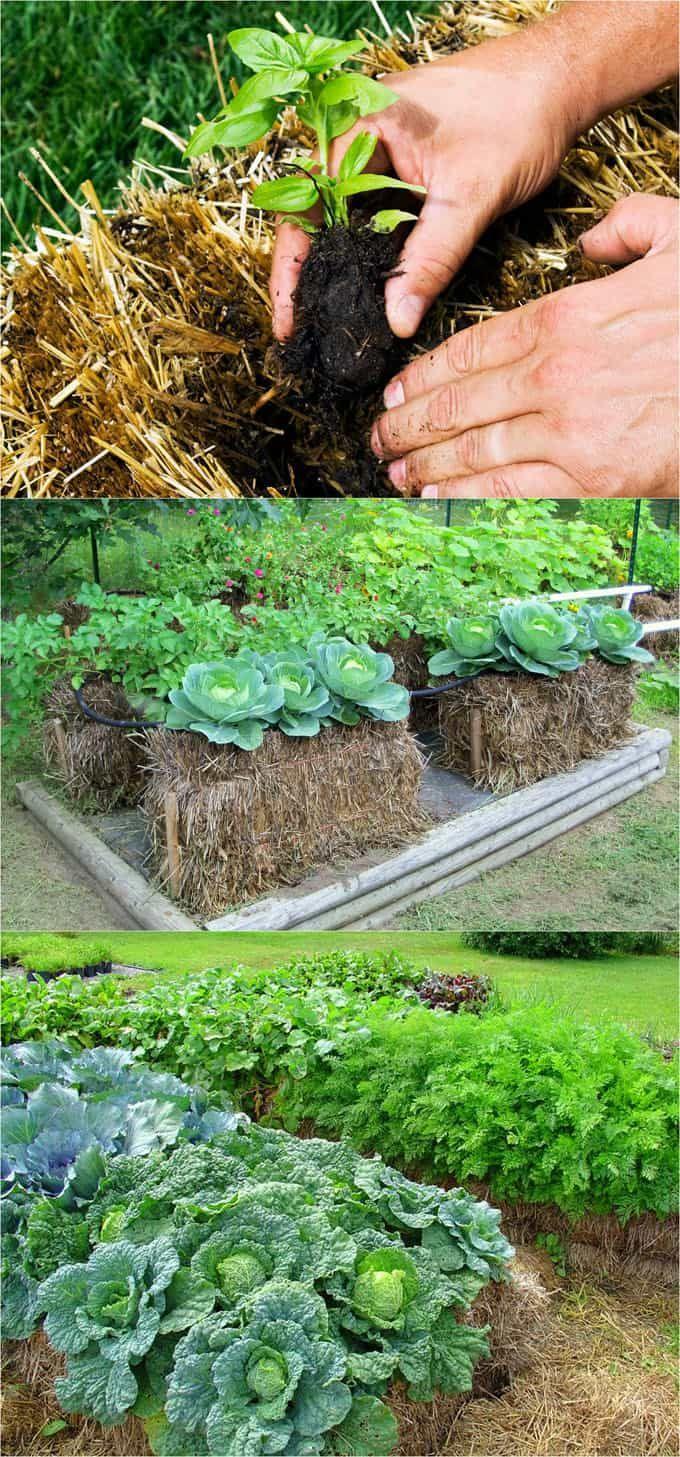 28 Best DIY Raised Bed Garden Ideas & Designs   Building a ...