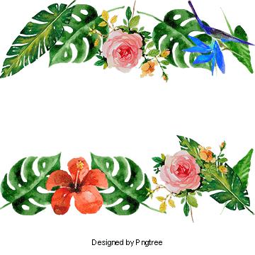 Vector Summer Flowers, Decoration, Frame, Tropical Plants