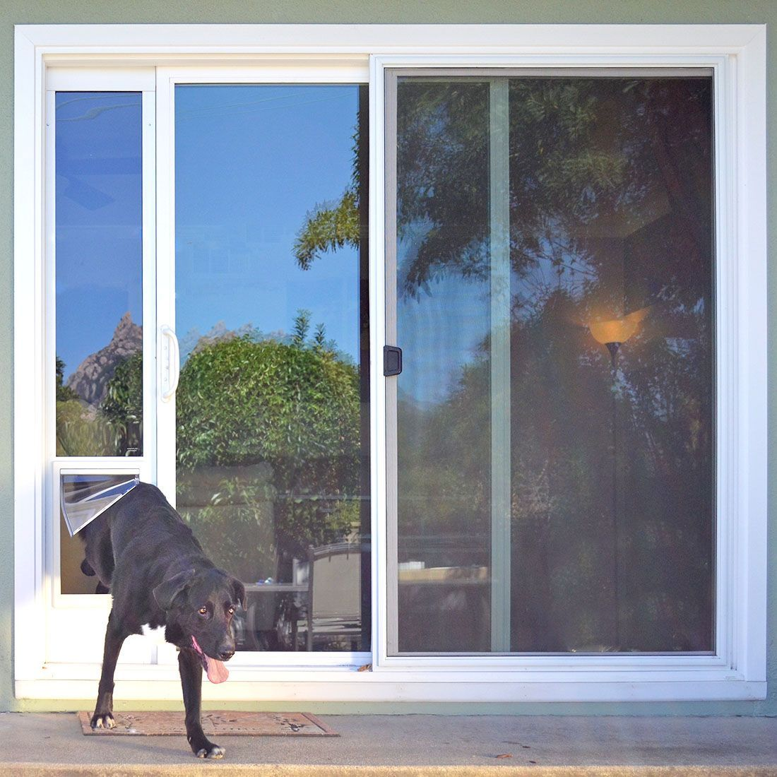 The Ideal Fast Patio Panel Pet Doors Install With No Tools Except The Included Pin Lock Single Pane Glass With Vinyl Flap Prices Vary With Panel Height