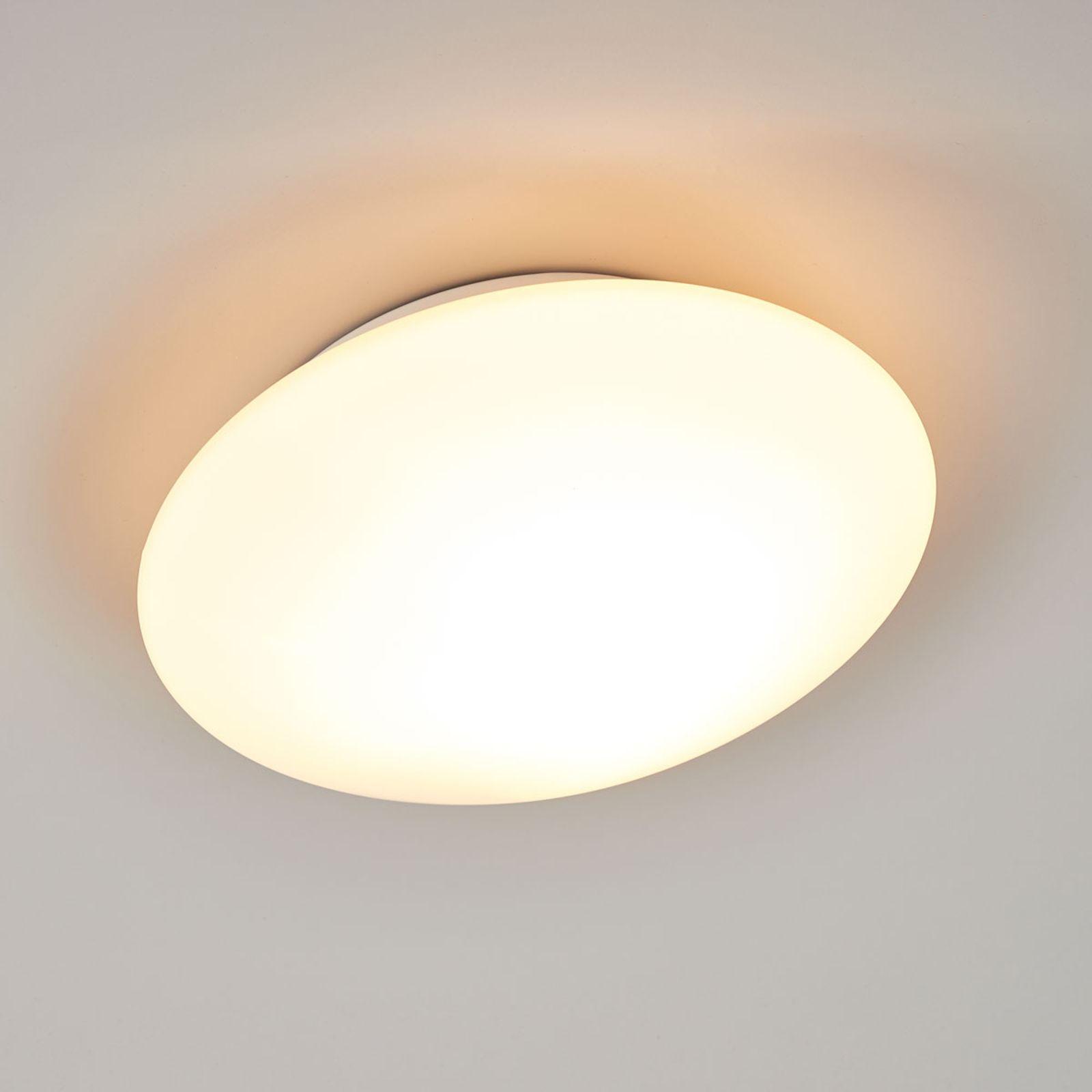 Glass Ceiling Light Opal Beleuchtung Decke Gläserne Decke Glaslampen
