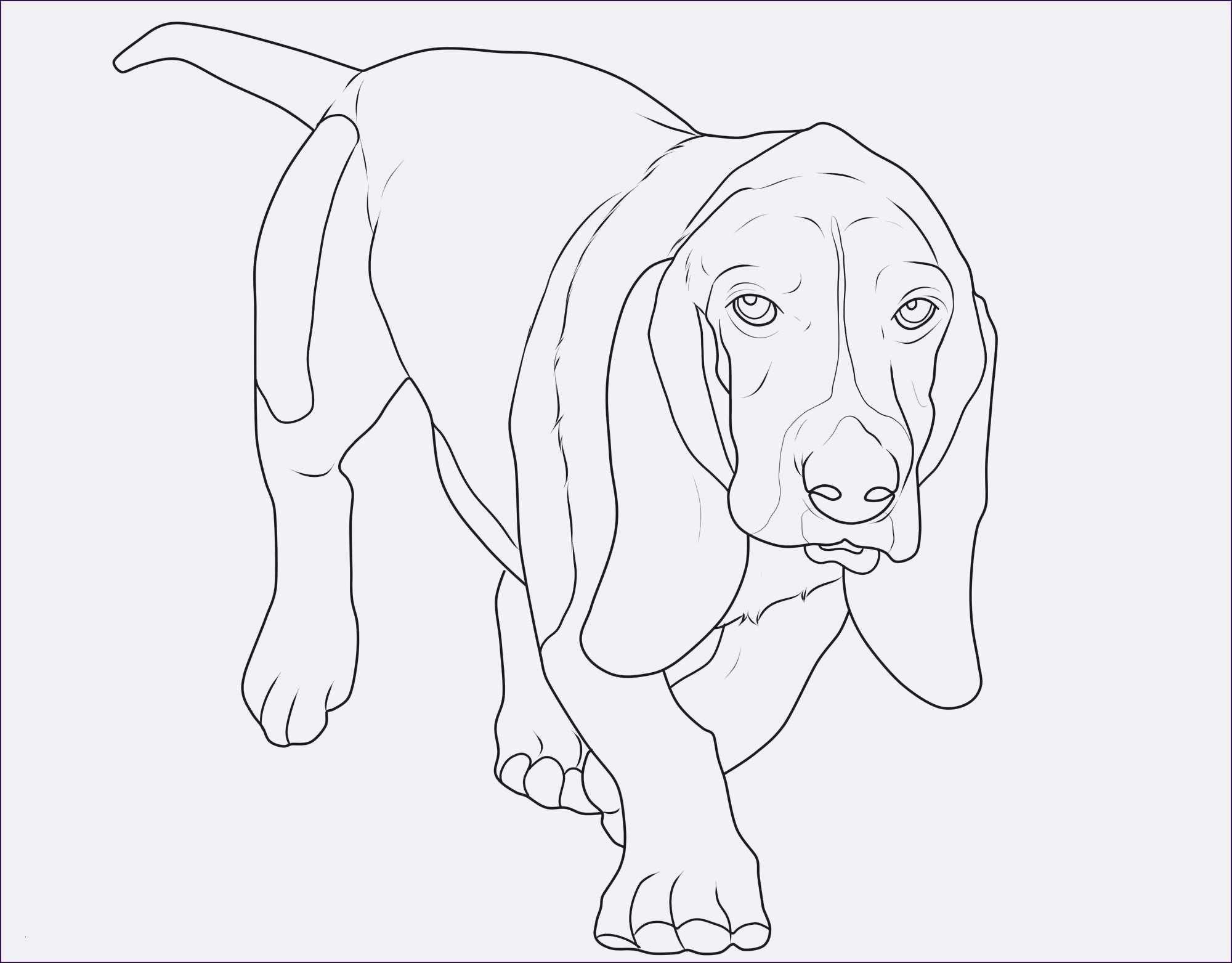 Neu Malvorlagen Kostenlos Tiere Katzen Dog Pictures Pictures Humanoid Sketch