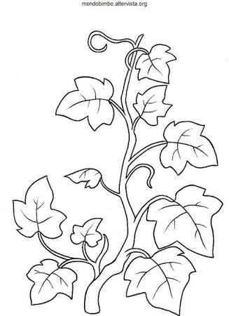 Image Result For Coloring Page Vine And Branches Vine And Branches