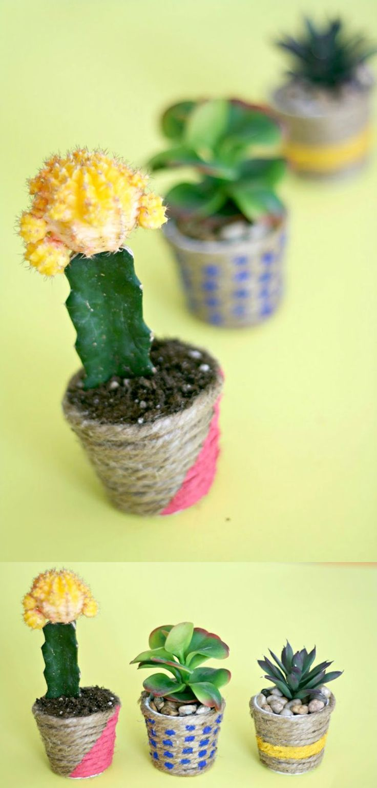 great gift idea mini diy planters cacti planters and minis