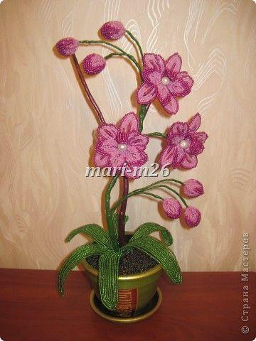Бисероплетение мастер класс схемы орхидея