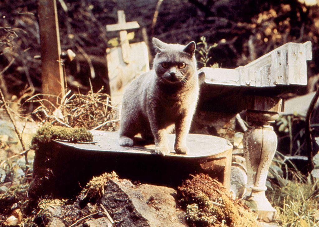Church, 'Pet Sematary' (1989)