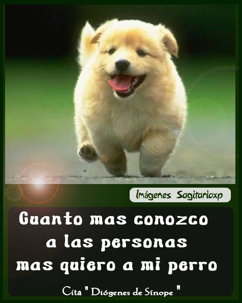 amo a mi perro tarjeta graciosa con frase cita de