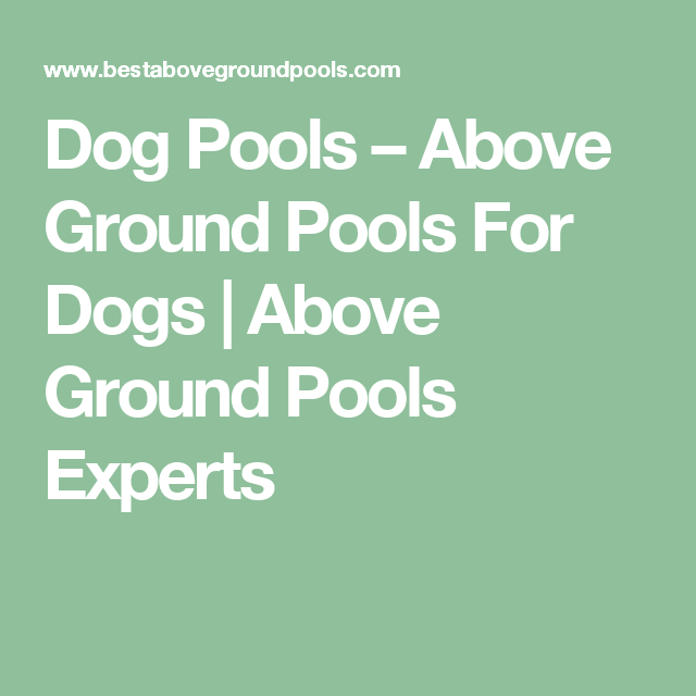 Swimming Pools Dog Above Ground For Dogs