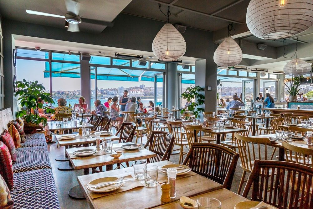 Restaurant Cafe Find North Bondi Fish Sydney Restaurant Cafe Fish