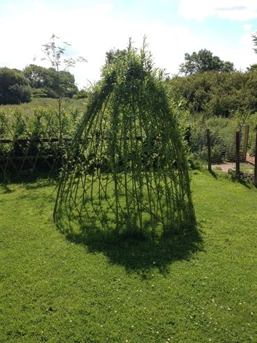 10 LIVING WILLOW DOME One of our standard  living willow structure  kits  available from 1st. NOVEMBER  in a range of sizes & designs as a diy kit or full installation on site. Kits from £39.50- £495.00 + delivery Website:     www.waterwillows.com Tel:  0845 020 4225
