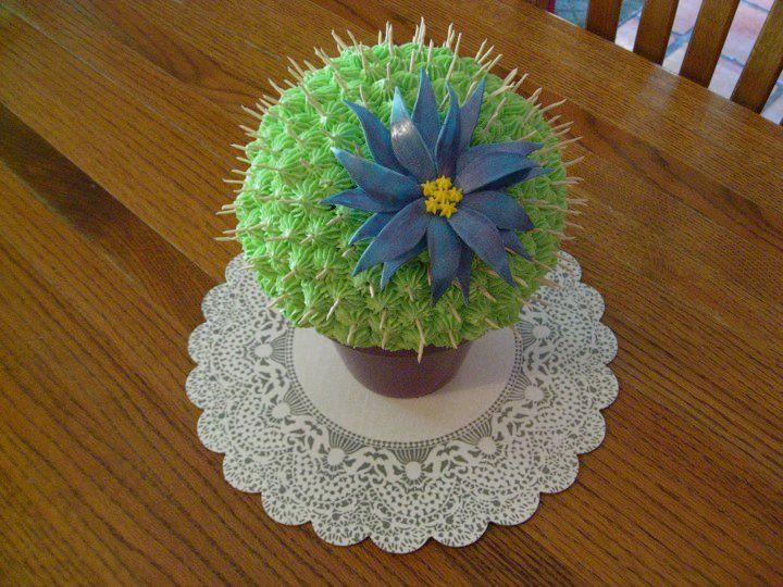 Mom's birthday cactus