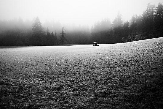 solitude by Bill vander Sluys http://www.redbubble.com/people/byrdman/works/4381541-solitude?utm_source=pinterest_medium=social_campaign=jun12