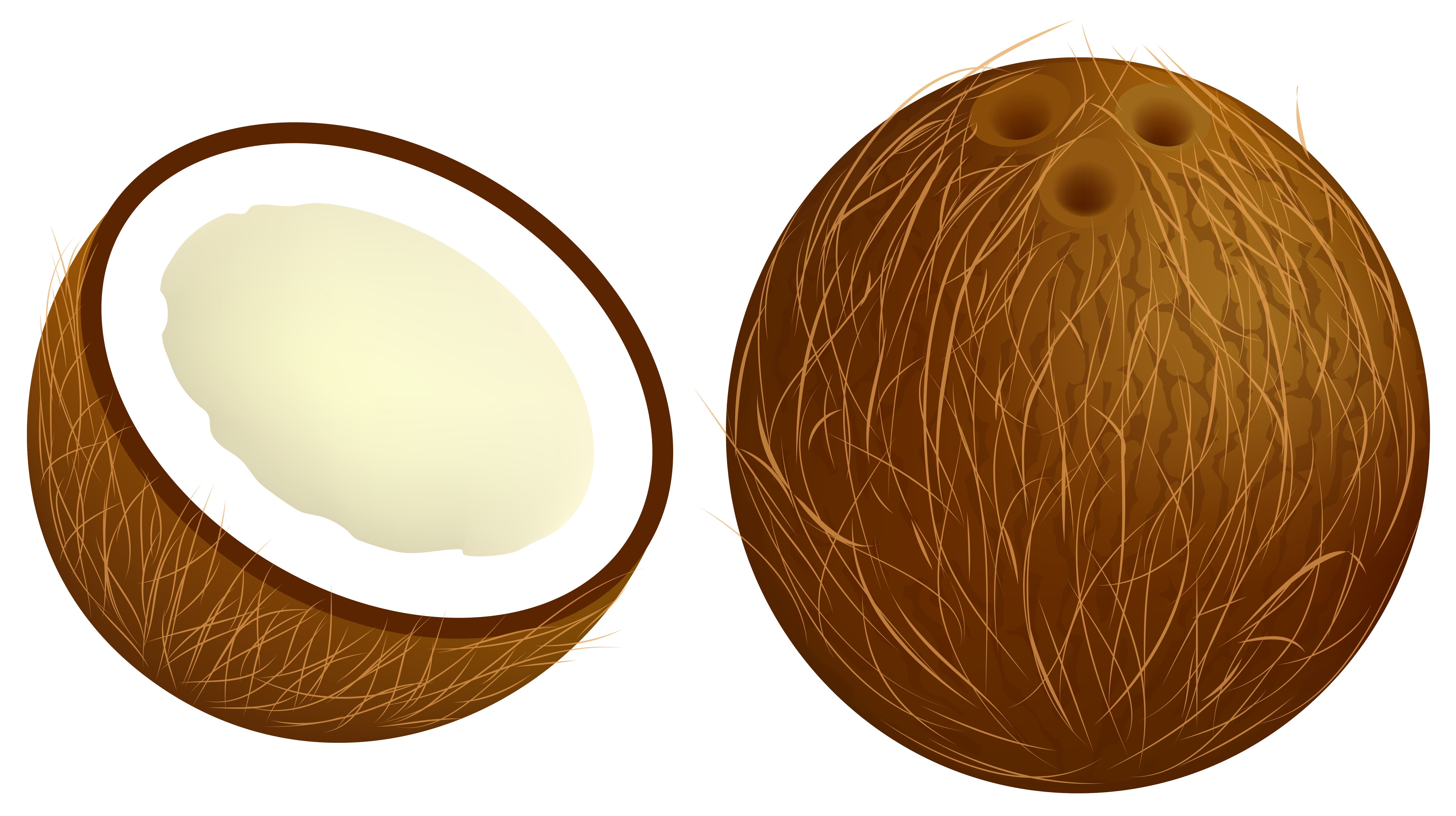 Coconut PNG Vector Clipart Image ภาพ, พื้นหลัง