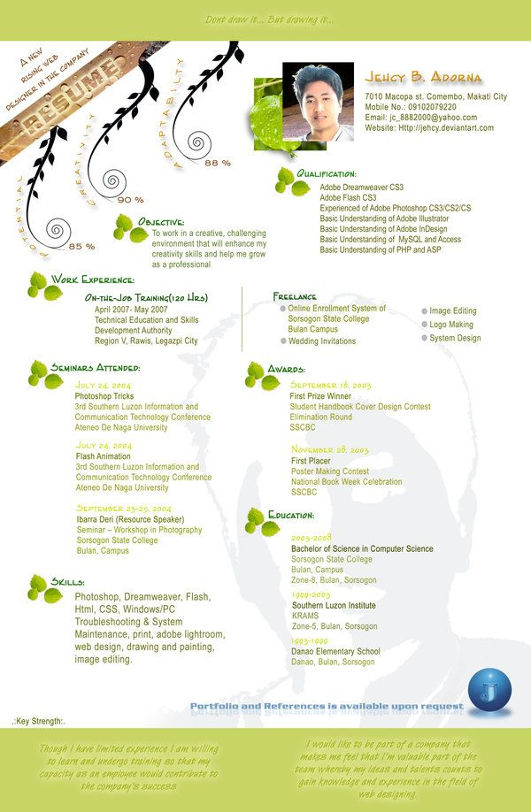 Resume Designs Pinterest Infographics, Resume cv and Graphics