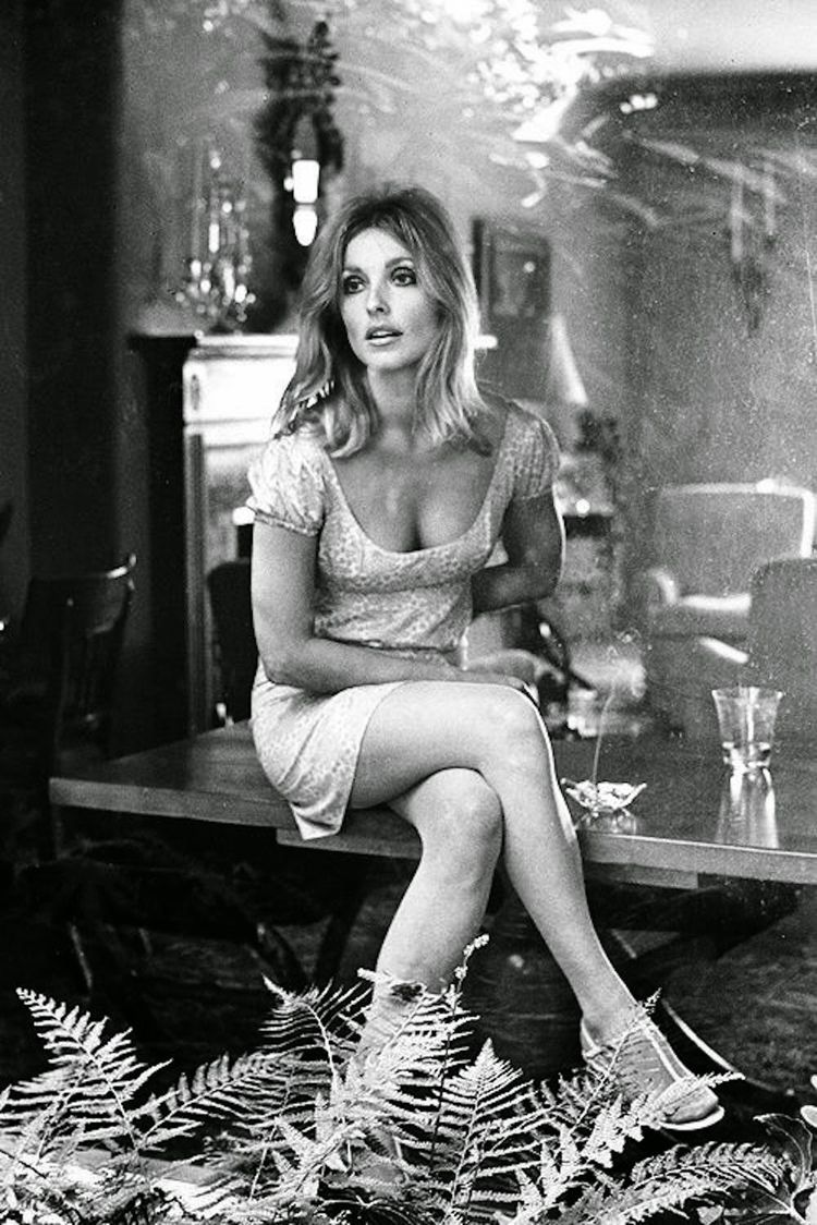 Sharon tate during the filming of valley of the dollsreading night film by marisha pessl has brought sharon tate and roman polanski to mind