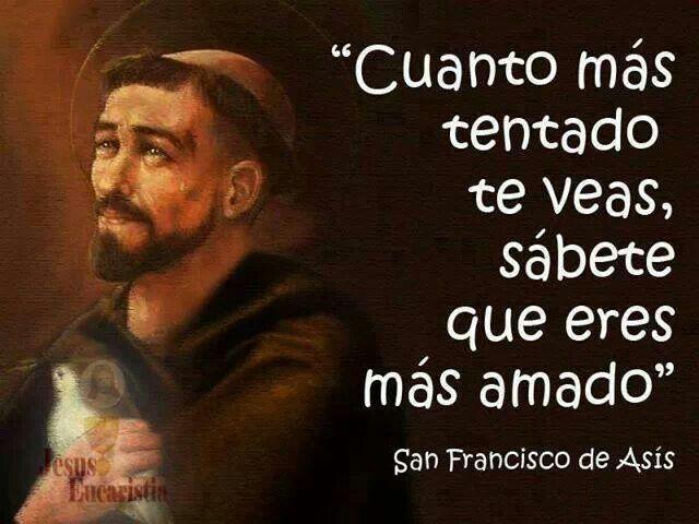 San Francisco De Asís Francisco De Asis Frases Oracion De