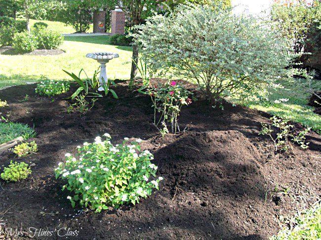 Fall Gardening Tips | Herbst, Tipps Und Garten Garten Im Herbst Tipps Ideen