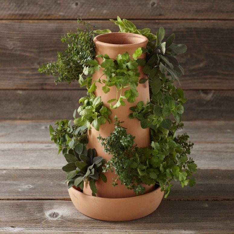 Vertical Terracotta Herb Tower Fresh