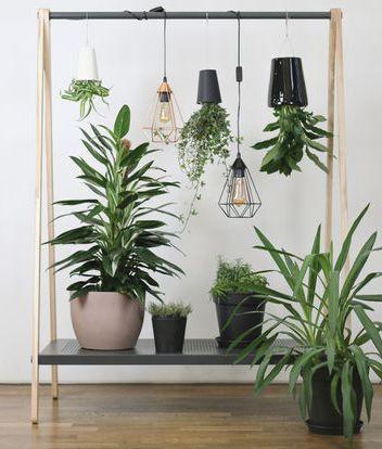 Do it Yourself»-Projekt: Kleiner Indoor-Garten | Indoor-Garten, Diy ...