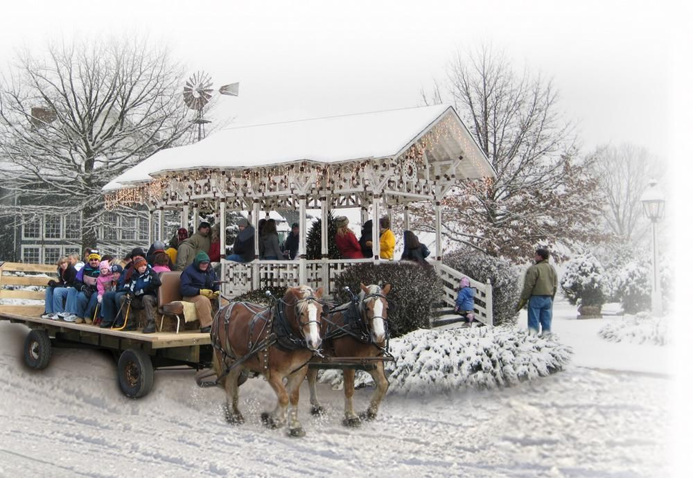 Cheerful Christmas Photos From Ohio Ohio Vacations Wooster Ohio Willoughby Ohio