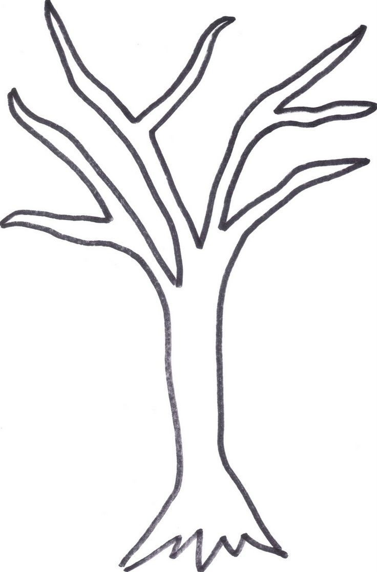 Line Art Of Trees : Leafless tree outline google search lake cottage decor