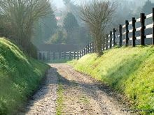 country roads and fences