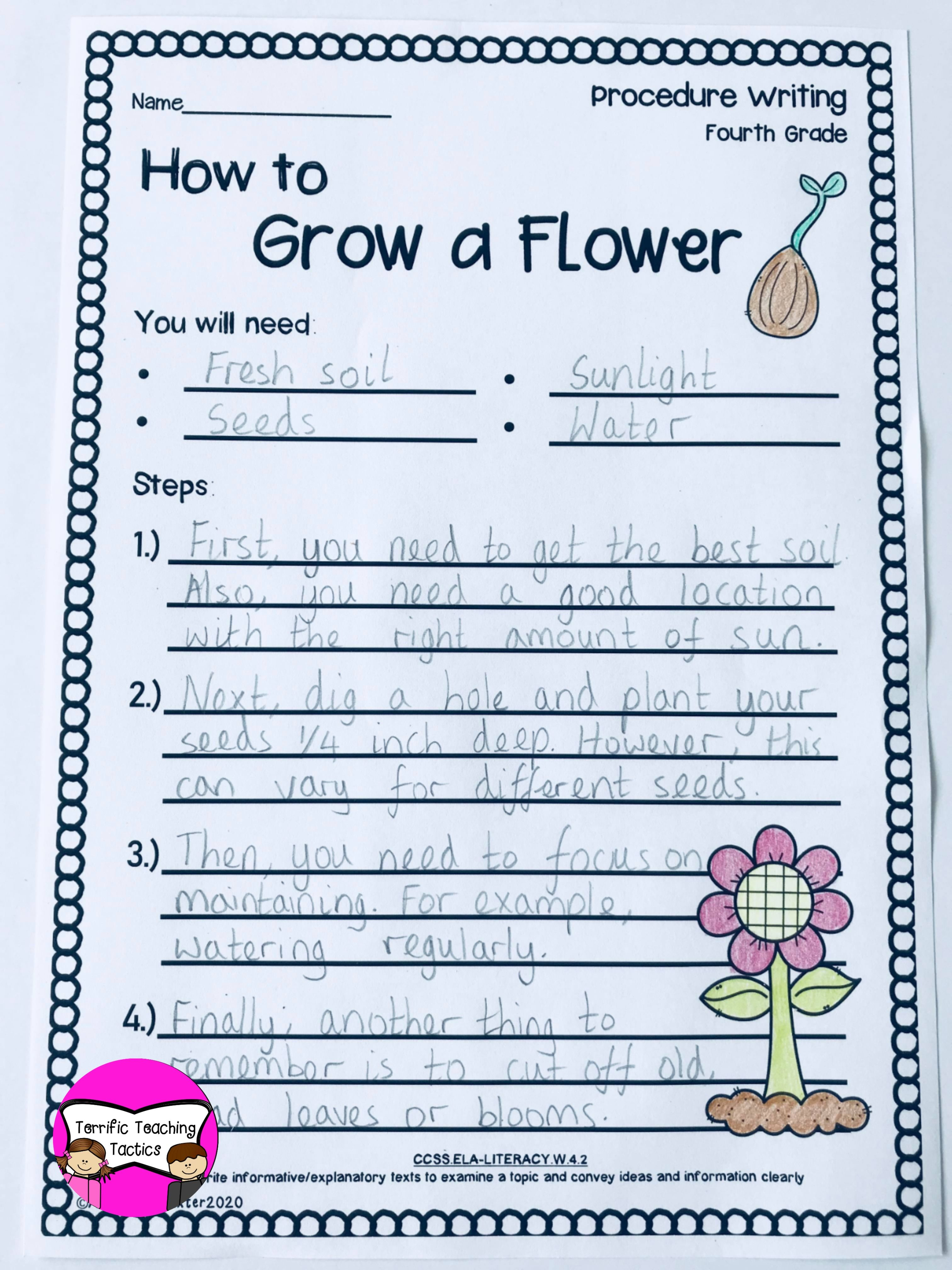 How To Grow a Flower Worksheet   Procedural writing [ 4032 x 3024 Pixel ]