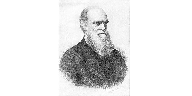 On savait déjà que Charles Darwin avait dit :