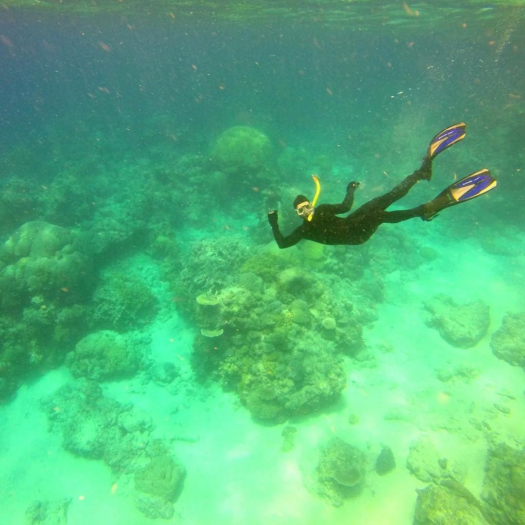 #greatbarrierreef #cairns #australia #diving by qwiknck http://ift.tt/1UokkV2