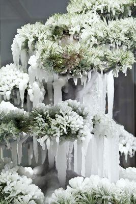 azuma makoto. alter nature (frozen pine)
