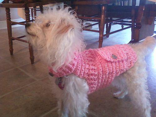 Darling Doggie Sweater: free pattern   Crochet for dogs   Pinterest ...