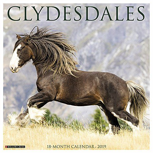 Pin by Just Horse Crazy on Clydesdale Horse Gifts | Pinterest | Clydesdale, Horses and Calendar