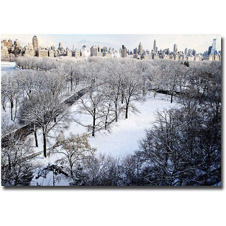 Trademark Fine Art Snow Covered Park Canvas Wall Art by Ariane Moshayedi, Size: 22 x 32, Multicolor