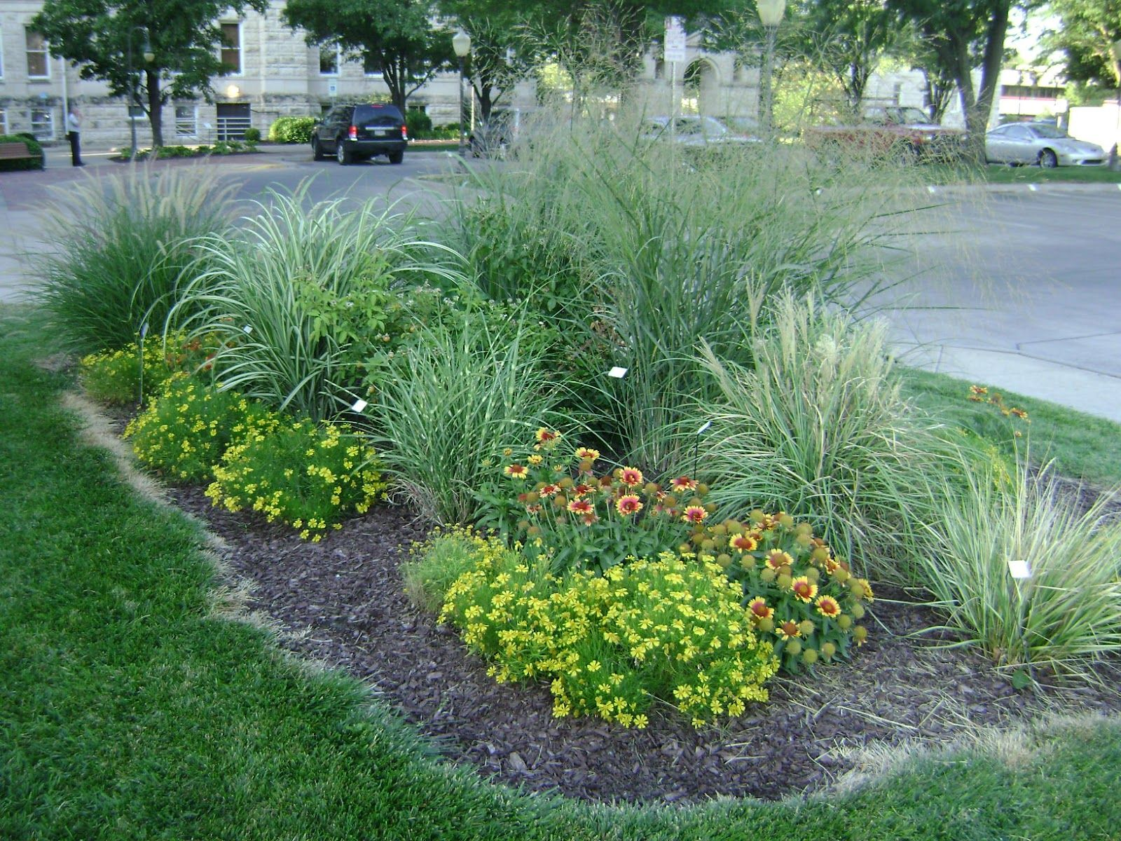 Garden design with landscaping with ornamental grasses for Landscape design using ornamental grasses
