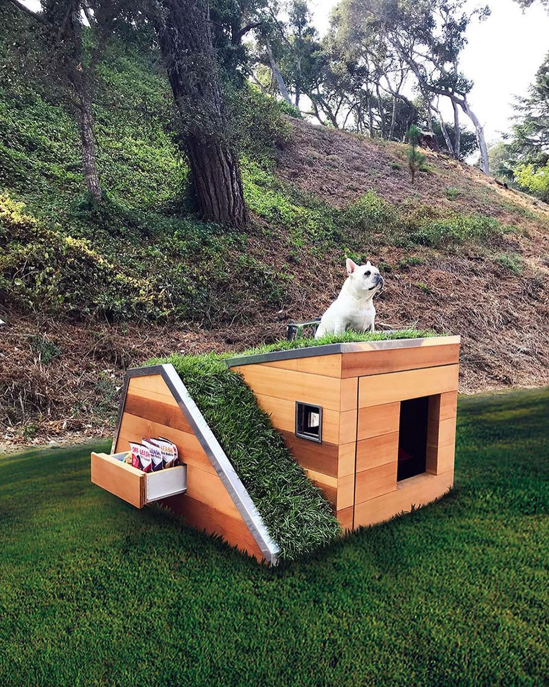 Architecture Design On Instagram Which Pet House Is Your Favourite 1 2 3 4 Or 5 Image 1 A Doggy Dr Cool Dog Houses Fancy Dog Houses Dog House Diy