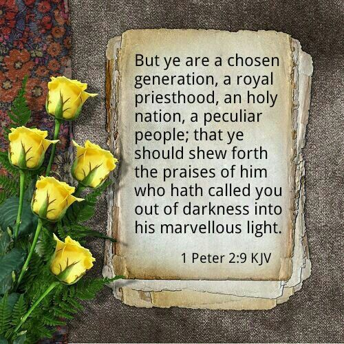 1 Peter 2:9 KJV Chosen Generation, Royal Priesthood, Holy Nation | Scripture verses, Kjv, Daily devotional prayer