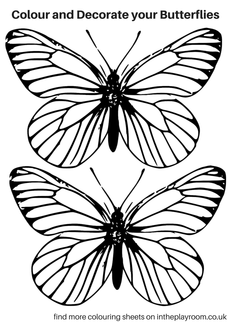 Free Printable Butterfly Colouring Pages | Butterfly, Free printable ...