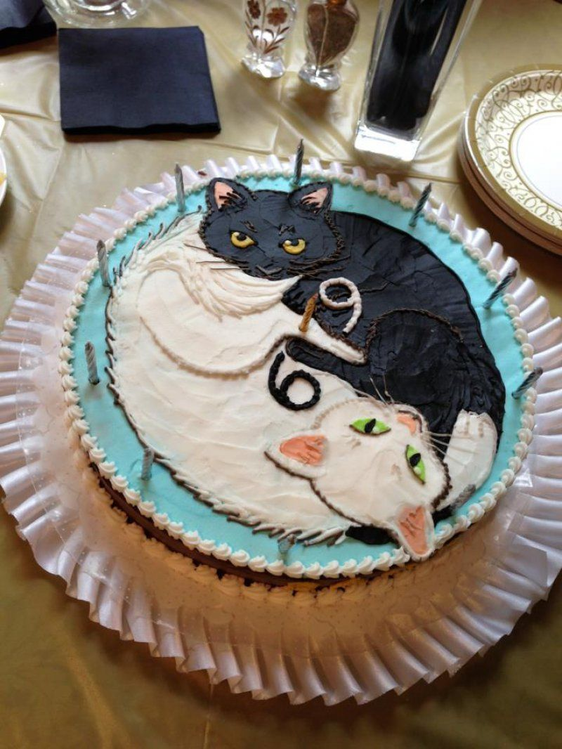 Heres A 69 Cat Birthday Cake For Some Reason CollegeHumor Picture