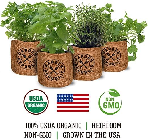 AmazonSmile Indoor Herb Garden Starter Kit Organic