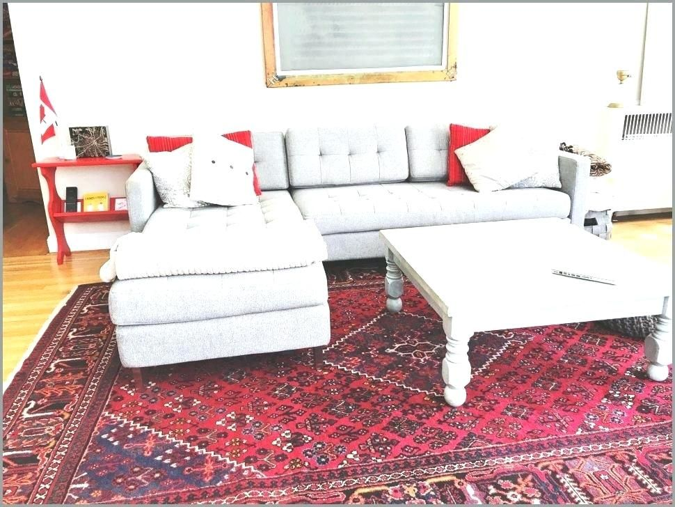 Large Area Rugs Under 100 Bedroom Rug Placement Canopy Bed