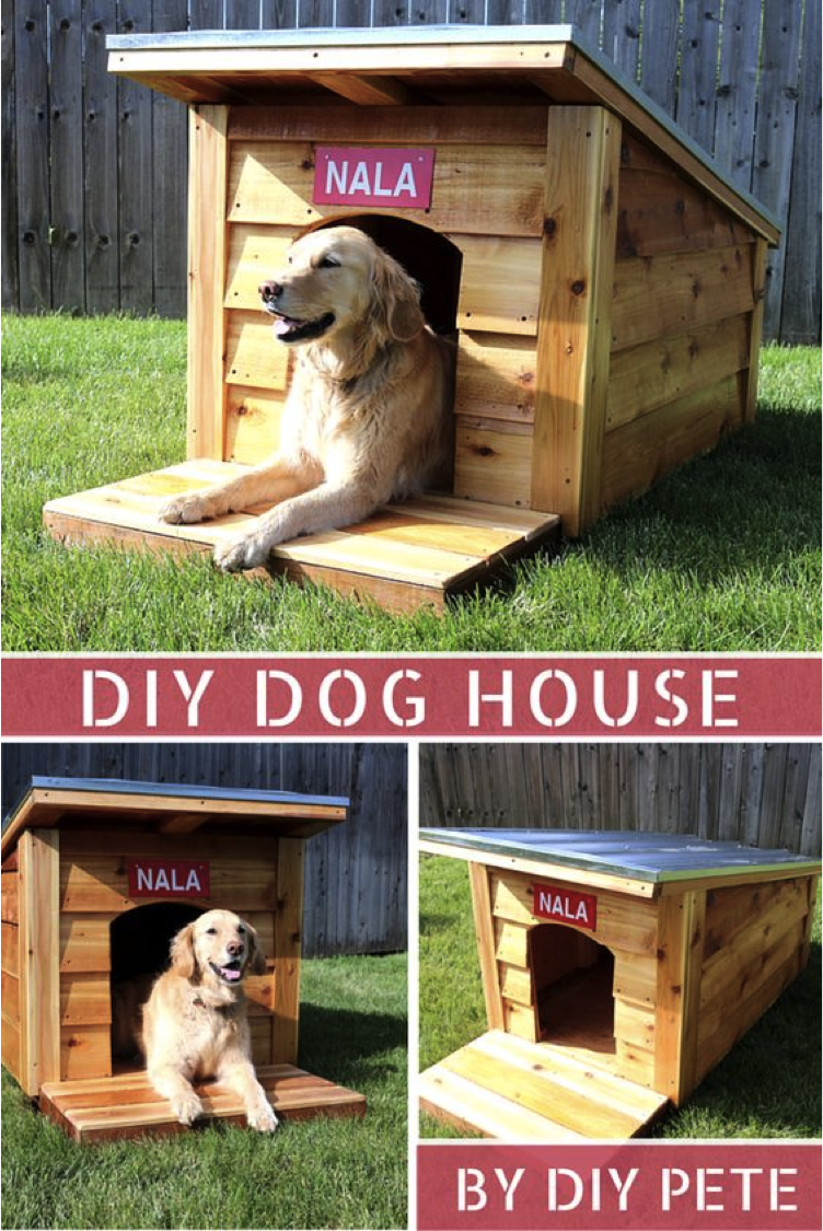 Ryobi Nation Diy Dog House Diy Dog Stuff Dog House Dog Kennel