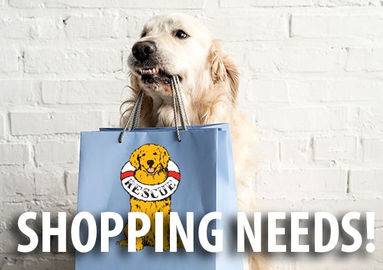 Wish List Of Items Needed At Golden Gateway Golden Retriever
