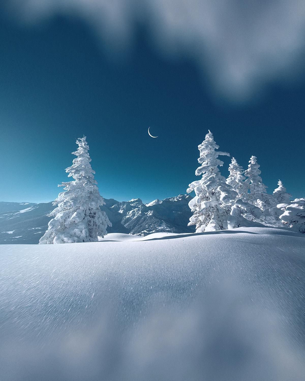 Winter Lapon Mood