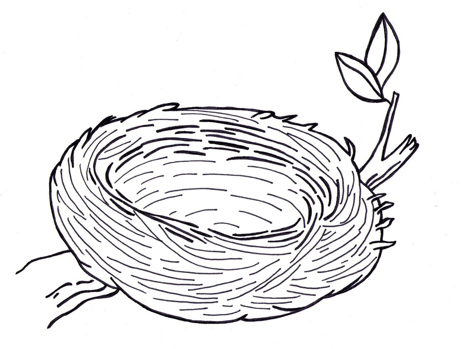 Line Drawing Nest : Line art drawings of trees posted by sarah bell smith at