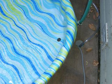 Here's a way to drain a kiddie pool if you decide to make it in-ground or semi-permanent.