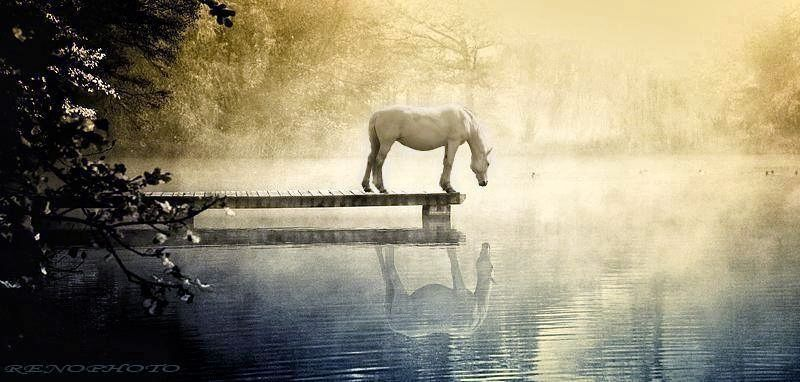 Nothing in the world is softer or weaker than water.