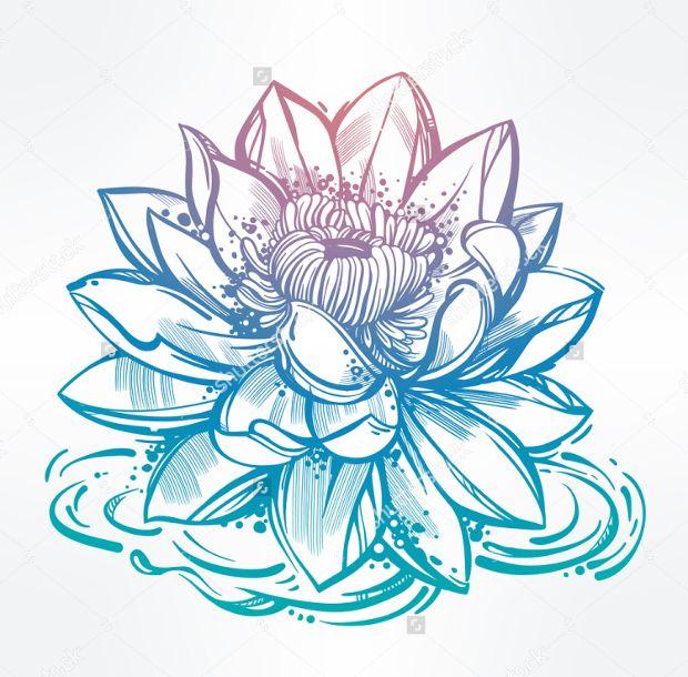 Lotus flower drawing tatuagem pinterest lotus flower drawing mightylinksfo